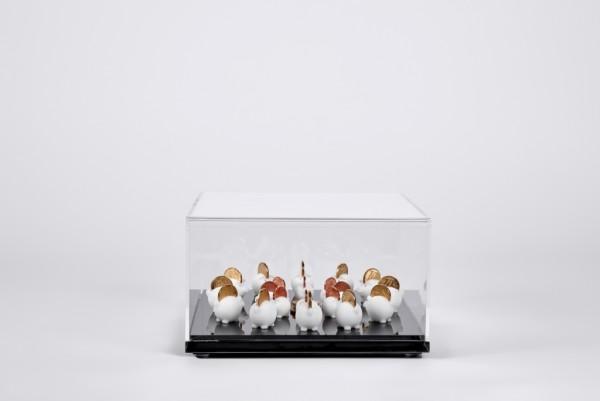 Caixa de acrílico com peças de ABS em impressão 3D e moedas 11X20X20cm [AFG015]