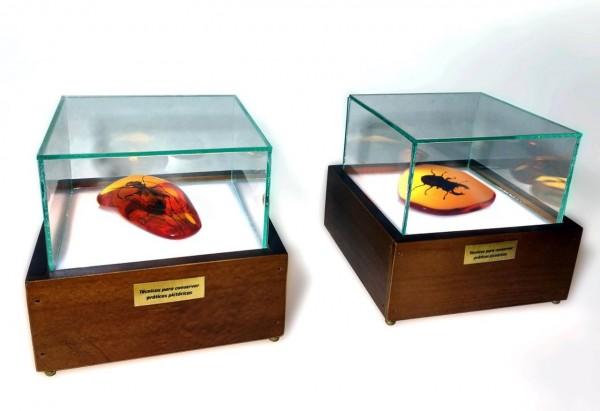 Tinta óleo modelada e incrustada em resina cristal pigmentada; madeira, vidro, acrílico e luz [EF013 014]