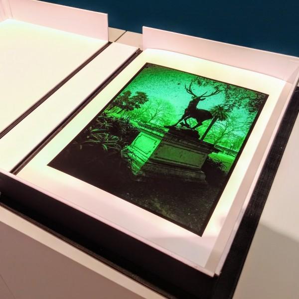 8 fotografias, pigmento mineral sobre papel Rag Photographique 308g. 24,5x34,5cm [RG034]